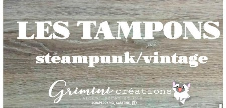 TAMPONS STEAMPUNK
